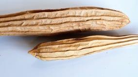 Calabaza moscada seca Imagenes de archivo