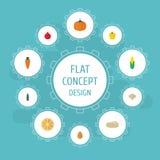Calabaza plana de los iconos, raíz, papaya y otros elementos del vector El sistema de símbolos planos de los iconos de la fruta t Imagen de archivo