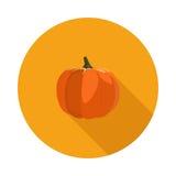 Calabaza plana del icono Fotos de archivo