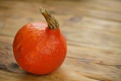 Calabaza roja de Hokkaido del kuri imagen de archivo libre de regalías