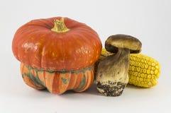 Calabaza, seta, maíz en el fondo blanco Imagenes de archivo
