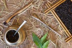 Calabaza y bombilla Foto de archivo libre de regalías