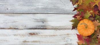 Calabaza y follaje reales del otoño en los tableros de madera blancos rústicos Fotografía de archivo