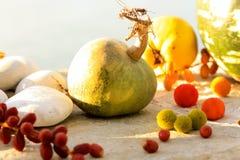 Calabaza y frutas otoñales Imagen de archivo libre de regalías
