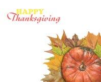 Calabaza y hojas para el día de la acción de gracias Imagen de archivo