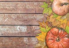 Calabaza y hojas para la acción de gracias en la tabla de madera Imagen de archivo