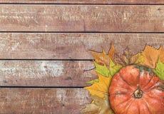 Calabaza y hojas para la acción de gracias en la tabla de madera Fotografía de archivo