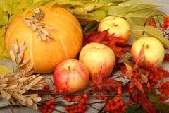 Calabaza y manzanas Fotos de archivo
