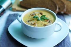 Calabaza, zanahoria y sopa de setas del champiñón fotos de archivo