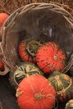 Calabazas Foto de archivo libre de regalías