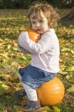 Calabazas adorables del abarcamiento de la niña en un campo del otoño Imágenes de archivo libres de regalías