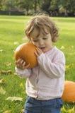 Calabazas adorables del abarcamiento de la niña en un campo del otoño Imagen de archivo