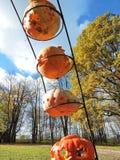 Calabazas anaranjadas de Halloween Imagen de archivo libre de regalías
