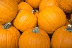 Calabazas anaranjadas maduras para la venta imagen de archivo