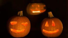 Calabazas asustadizas de Halloween metrajes