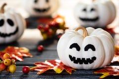Calabazas blancas del fantasma con las hojas de otoño coloridas en una madera negra fotos de archivo