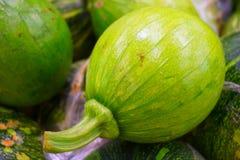 Calabazas blandas verdes foto de archivo