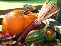 Calabazas, calabaza y maíz Imagen de archivo