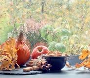 Calabazas, canela, azúcar y hojas por la ventana en DA lluviosa Imágenes de archivo libres de regalías