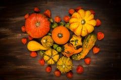 Calabazas clasificadas para la acción de gracias y Halloween Foto de archivo