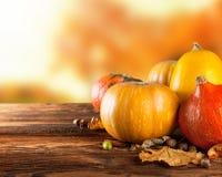 Calabazas coloreadas otoño en la tabla de madera Fotos de archivo libres de regalías