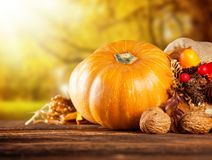 Calabazas coloreadas otoño en la tabla de madera Fotos de archivo