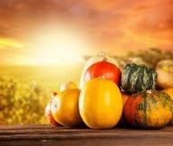 Calabazas coloreadas otoño en la tabla de madera Foto de archivo libre de regalías