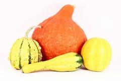 Calabazas coloridas Imagenes de archivo