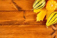 Calabazas como decoración para el día de la acción de gracias Foto de archivo libre de regalías