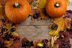 Calabazas con la opinión del ojo de pájaro visto de las hojas de otoño para el día de la acción de gracias Fotografía de archivo