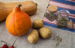 Calabazas con la patata, pimientas de chile rojo y especias italianas fotos de archivo libres de regalías