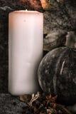 Calabazas cosechadas con las hojas de la caída Foto de archivo libre de regalías