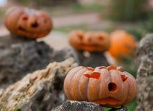 Calabazas de Halloween al aire libre Imágenes de archivo libres de regalías