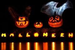Calabazas de Halloween con velo Foto de archivo