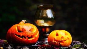 Calabazas de Halloween en la tabla de madera en un bosque espeluznante Imagenes de archivo