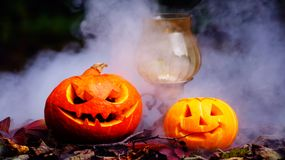 Calabazas de Halloween en la tabla de madera en un bosque espeluznante Fotografía de archivo