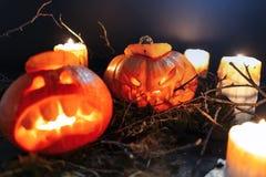 Calabazas de Halloween en un bosque fantasmagórico en la noche fotografía de archivo libre de regalías
