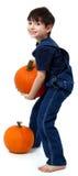 Calabazas de la cosecha del muchacho Foto de archivo libre de regalías