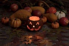 Calabazas de la decoración y del otoño de la calabaza que brillan intensamente en fondo oscuro fotos de archivo libres de regalías