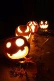 Calabazas de la Jack-o-linterna de Halloween Imágenes de archivo libres de regalías