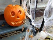 Calabazas de la naranja de Halloween Imagen de archivo