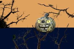 Calabazas de madera viejas de Halloween Imágenes de archivo libres de regalías