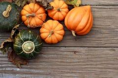 Calabazas de otoño Fotografía de archivo libre de regalías