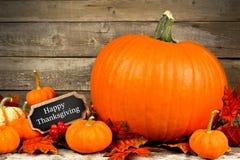 Calabazas de otoño con la etiqueta feliz de la pizarra de la acción de gracias Imagen de archivo