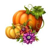 Calabazas de otoño con las flores estacionales, ejemplo aislado en el fondo blanco libre illustration