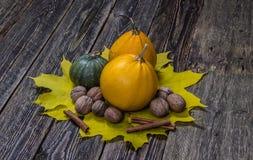 Calabazas de otoño con las hojas de la caída Fotografía de archivo libre de regalías