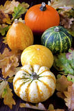 Calabazas de otoño con las hojas en el tablero de madera Imágenes de archivo libres de regalías