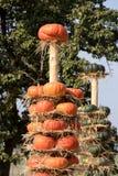 Calabazas de otoño maduras dispuestas en tótem Fotos de archivo