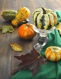 Calabazas de otoño y hojas del vaple Imágenes de archivo libres de regalías