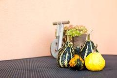 Calabazas decorativas Foto de archivo libre de regalías